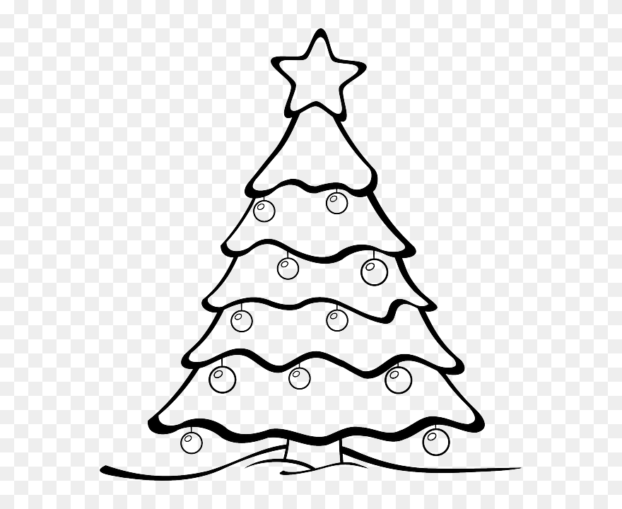 Black Tree White Christmas Xmas Garden Forest Christmas Tree Cartoon Drawing Clipart 5788689 Pinclipart Download this cartoon trees illustration in black and white vector illustration now. christmas tree cartoon drawing clipart