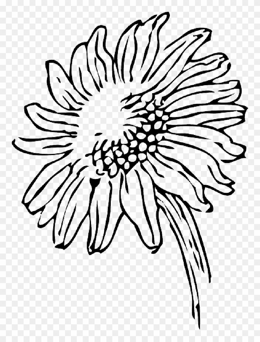 7 Sunflower Coloring Pages for Adults | FaveCrafts.com | 1160x880