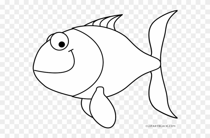 Fish outline white. Png transparent download clipart