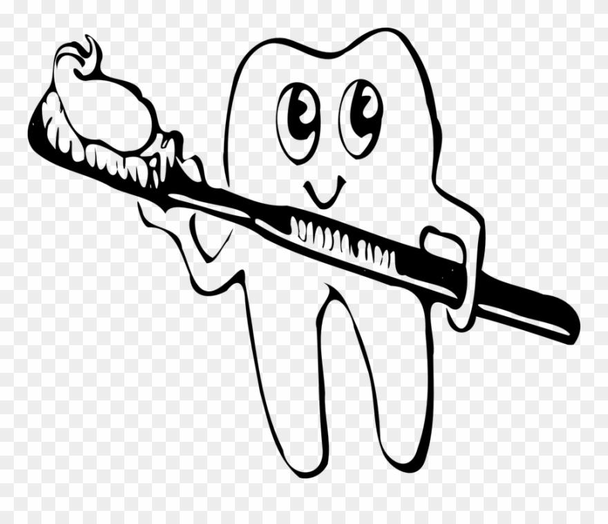 Good Oral Health Begins With Clean Teeth