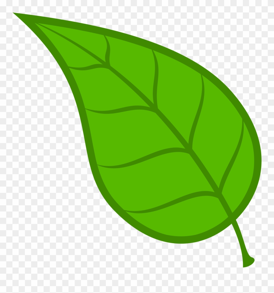 Green Leaves Clip Art