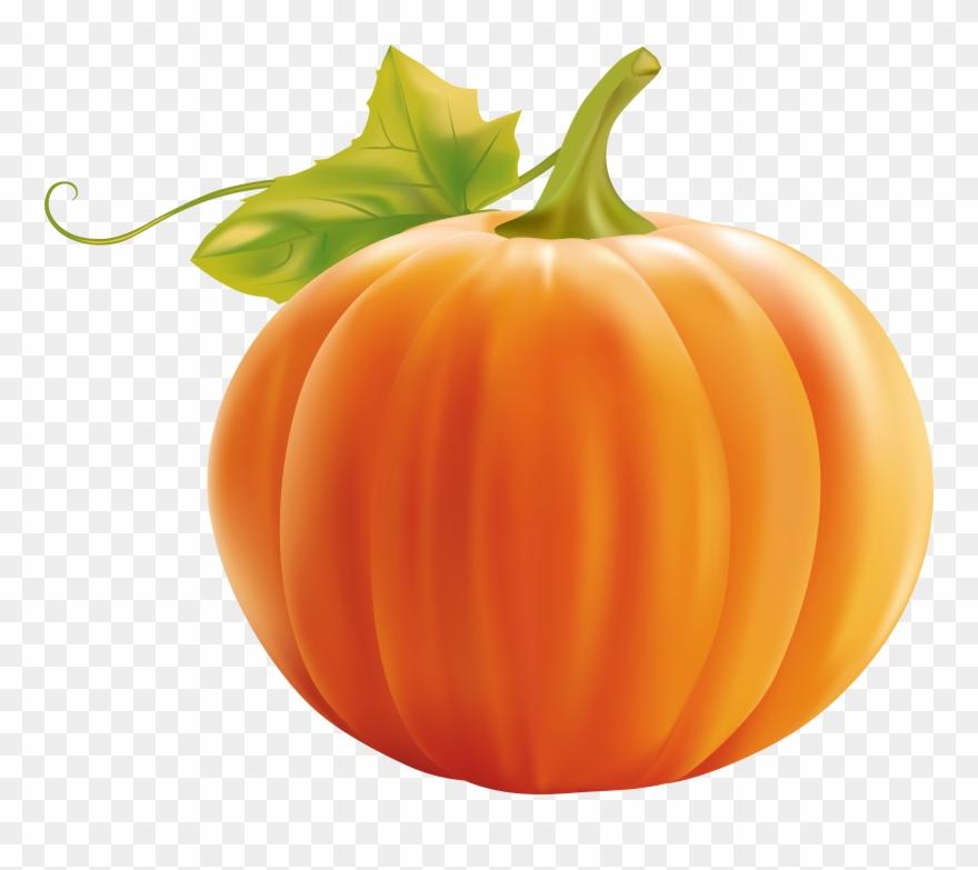 Pumpkin transparent. Clipart clip art png