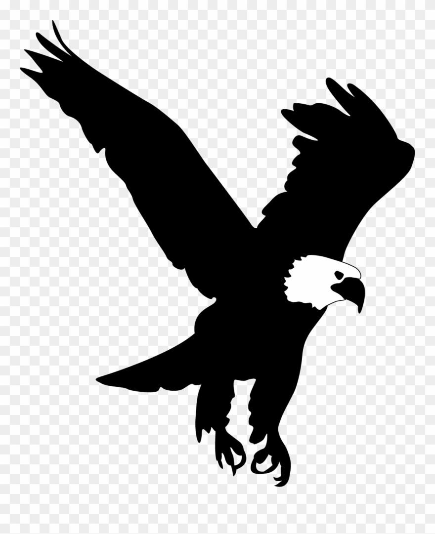 Bald Eagle Flying Clipart Clipartfest