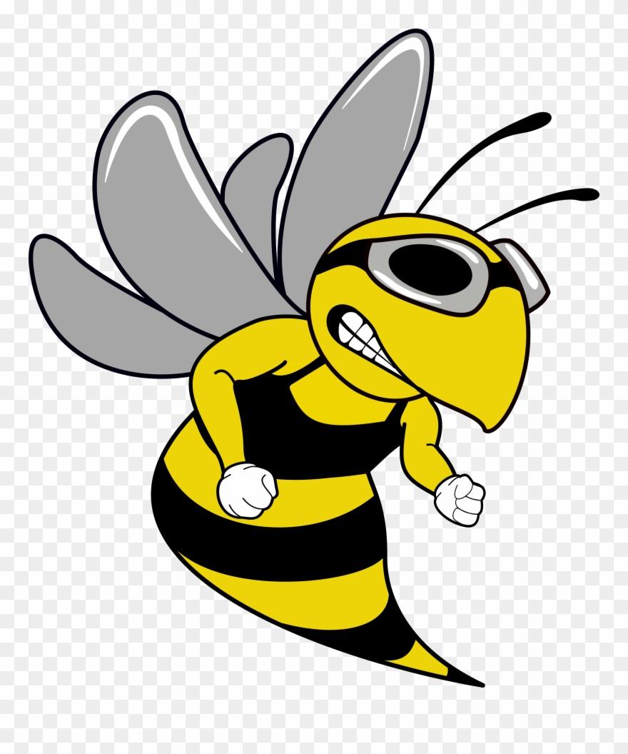 Swim Team Hornet Mascot Cartoon Clipart 616682 Pinclipart