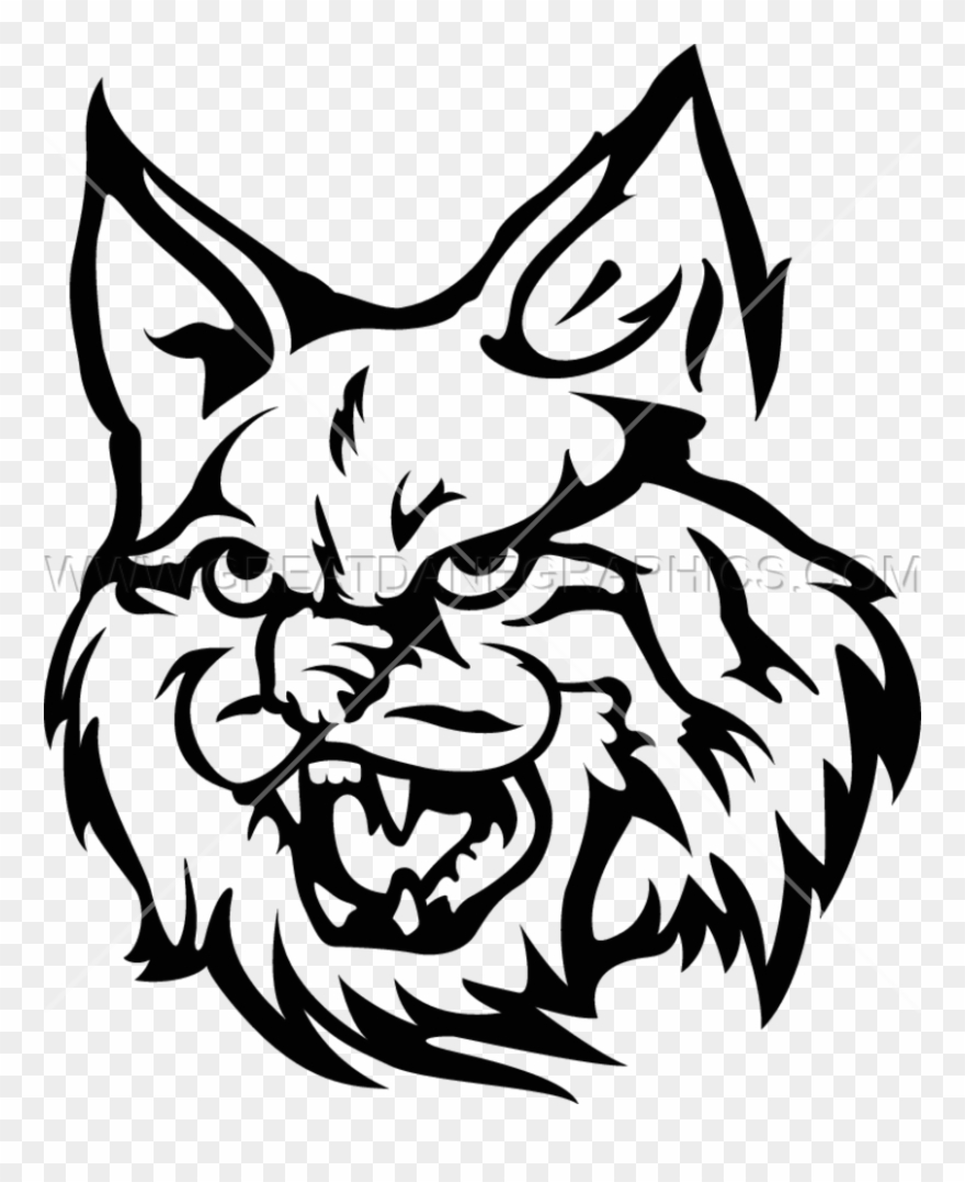 Wildcat Wildcat Mascot Transparent Background Clipart 642783