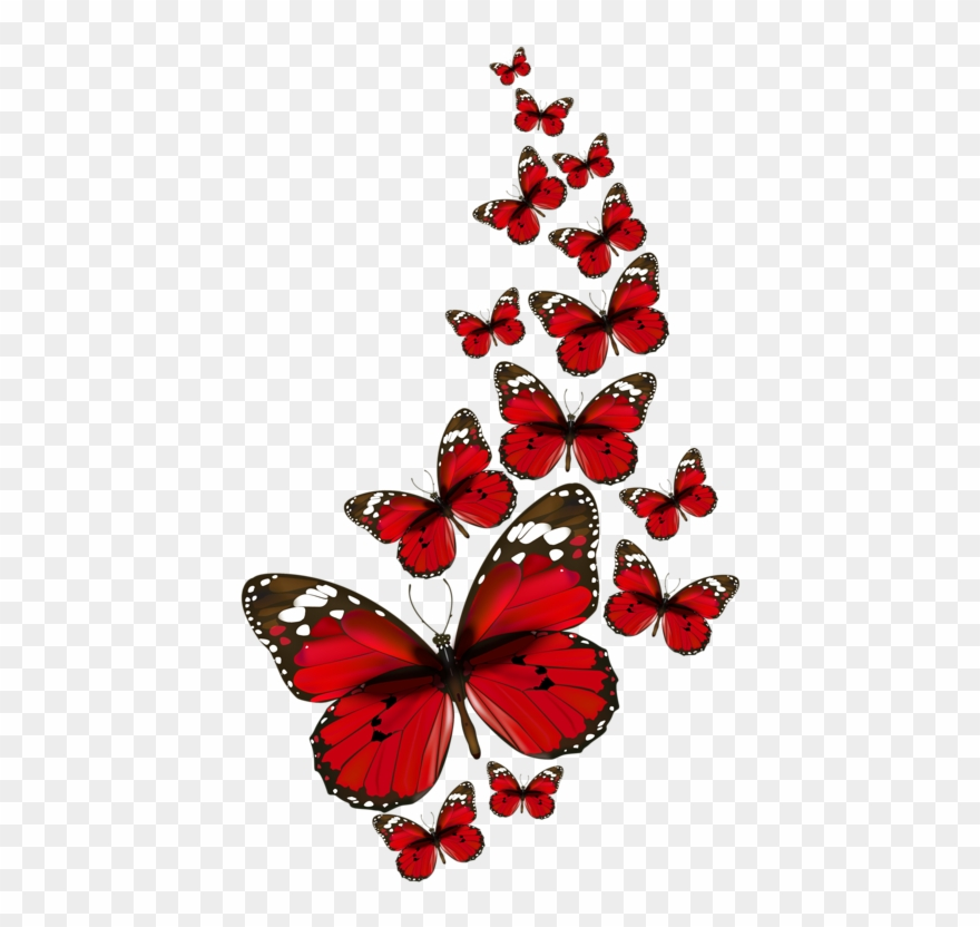 Papillons Red Butterfly, Butterfly Kisses, Butterfly - Red