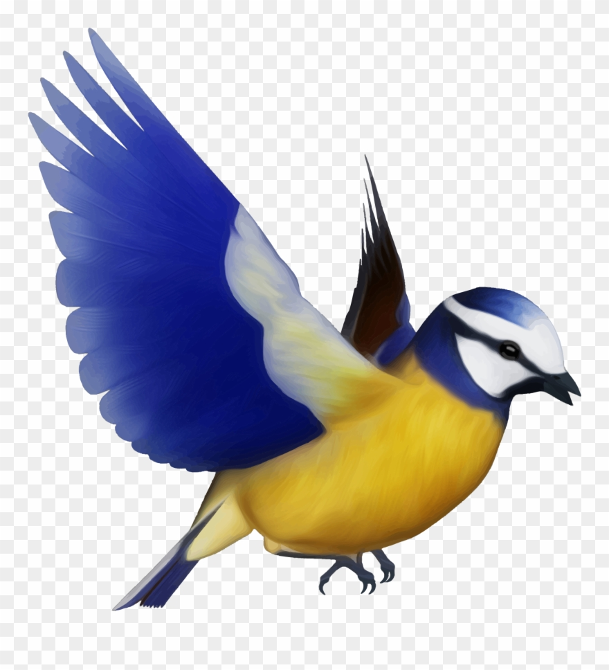 Flying Bird Clipart Bird Png Flying Colourful Birds Png Transparent Png 666444 Pinclipart
