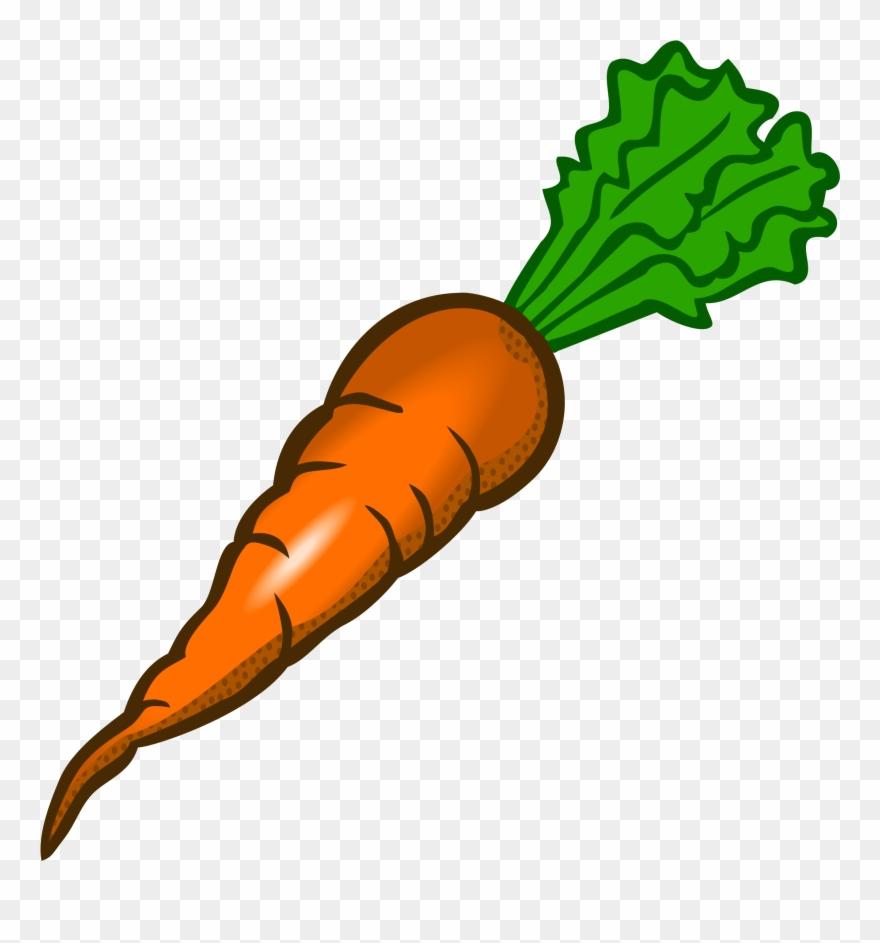 Carrot Clip Art Free Clipart Images Carrot Clipart Transparent