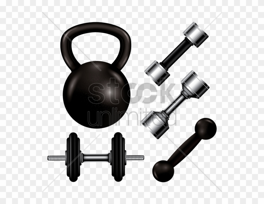 Vector royalty free collection of gym equipment vector dumbbell
