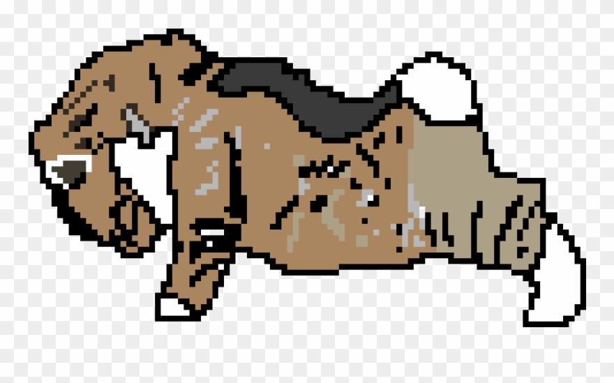 Cat Doing Push-ups - Guinea Pig Clipart (#708675) - PinClipart