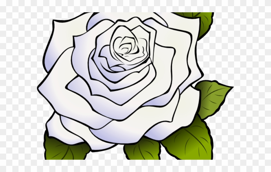 White Rose Clipart Animated Clipart White Rose Transparent