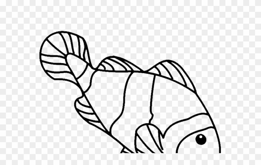 koi fish clipart draw in color gambar sketsa ikan nemo png download 757800 pinclipart koi fish clipart draw in color gambar