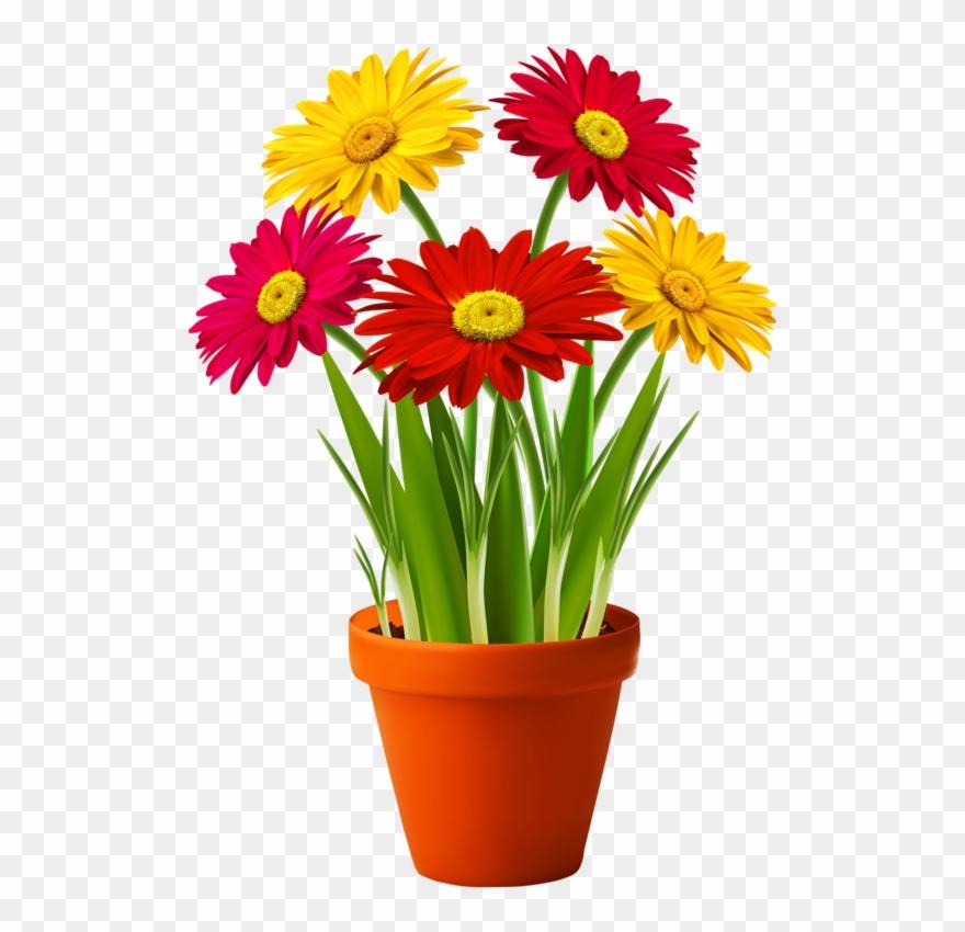 Bouquets Fleurs Tube Flowers Vessels Pinterest Flower In Pot