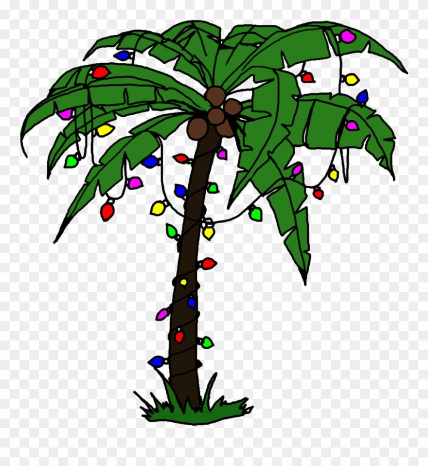 palm tree with christmas lights