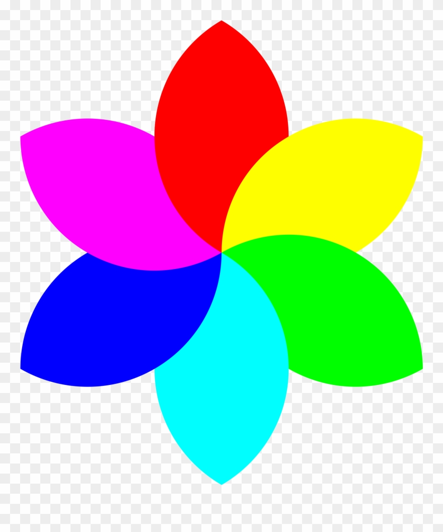 Cool Drawings Of Seven Petaled Flowers Clipart Best 6