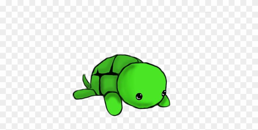 Kawaii Cute Turtle Drawing