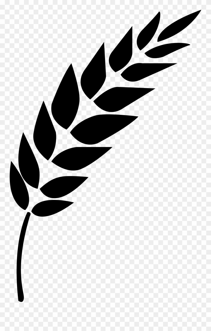 Wheat Vector - Black And White Wheat Stalk Clipart ...