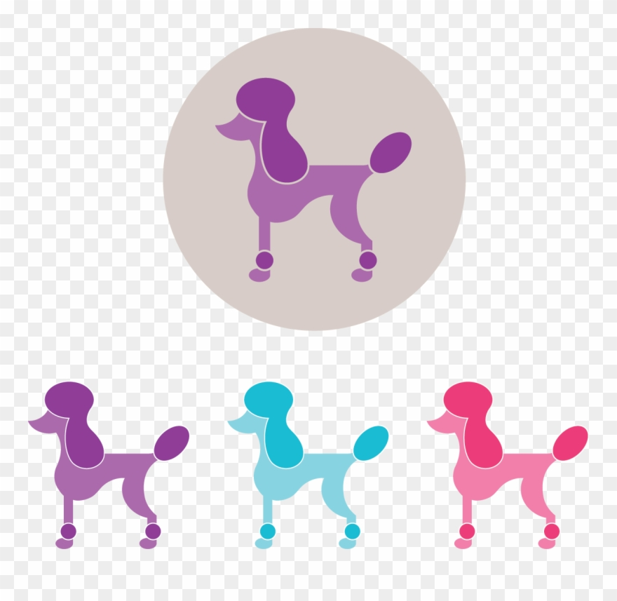 Poodle Cliparts, Stock Vector And Royalty Free Poodle Illustrations
