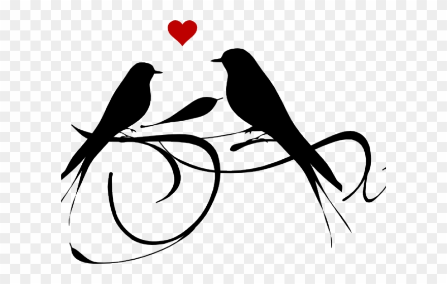 Love Birds Clipart Black And White Png Download 864230 Pinclipart