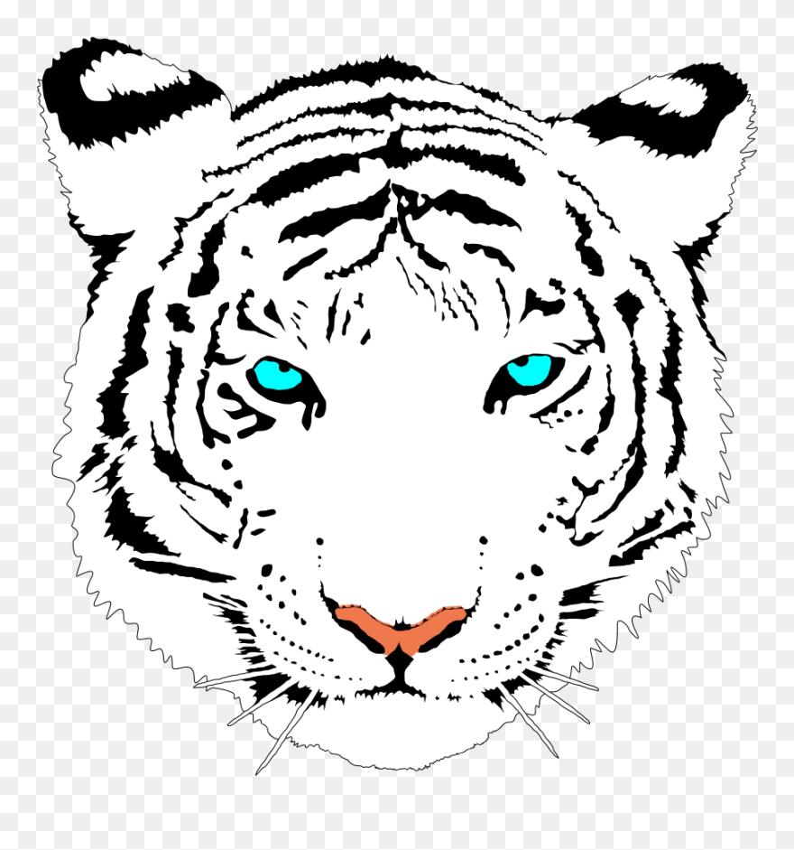 32c2cbf9c White Tiger Clipart Cute - Tiger Png Transparent Png (#873002 ...