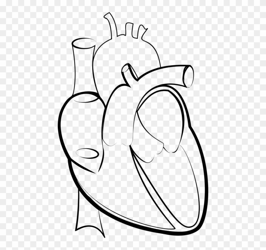 Drawing Line Art Heart Hartlijn