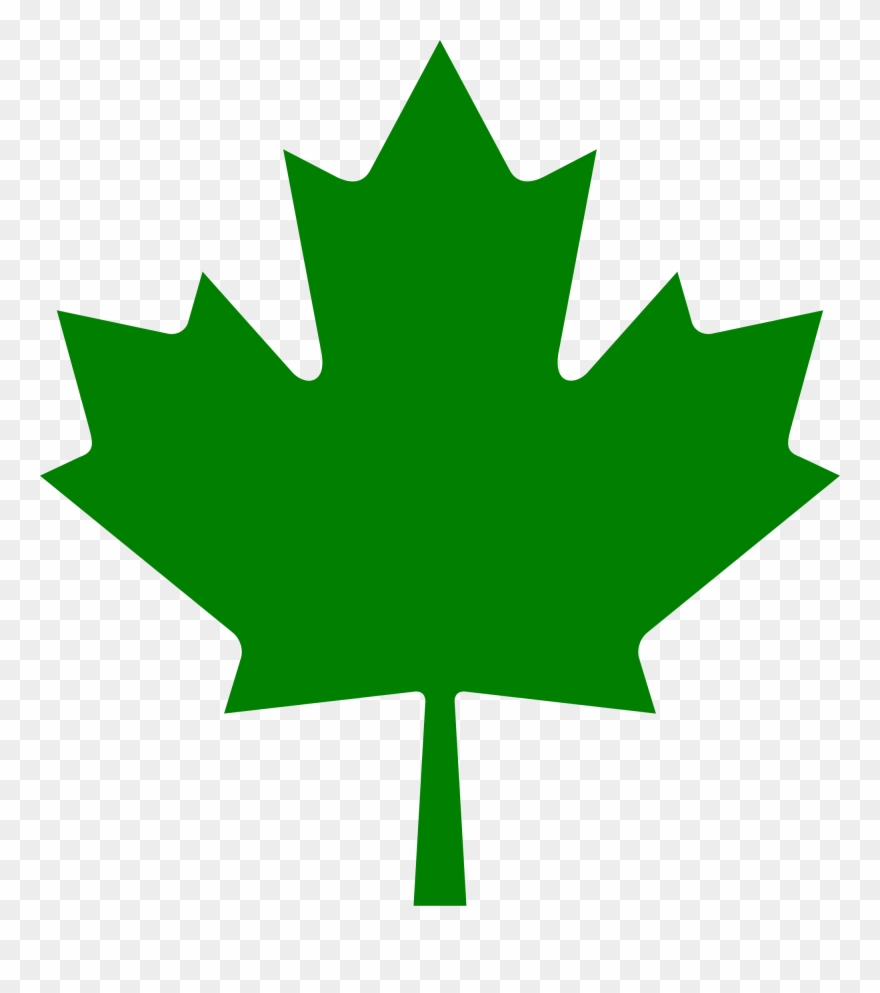 The Truth About Canadian Leaf Outline Imededucation
