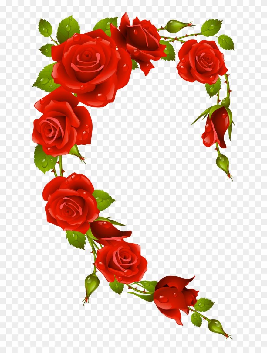 Фото, Автор Missis - Fleur Rose Et Blanche Clipart (#897991 ...
