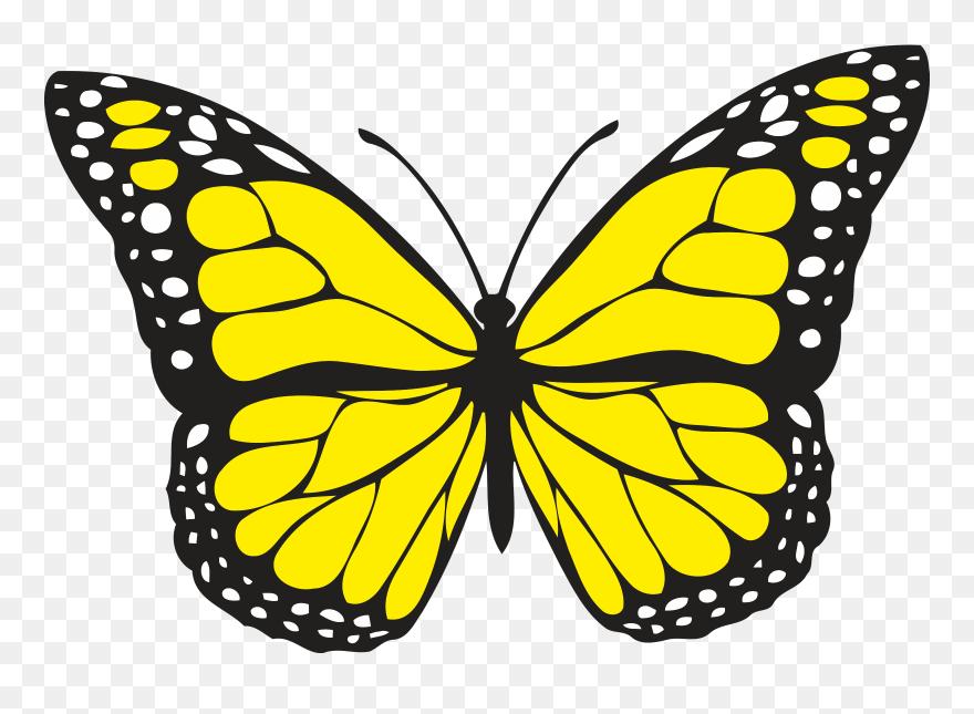 Butterfly yellow. Spiritual meaning of butterflies