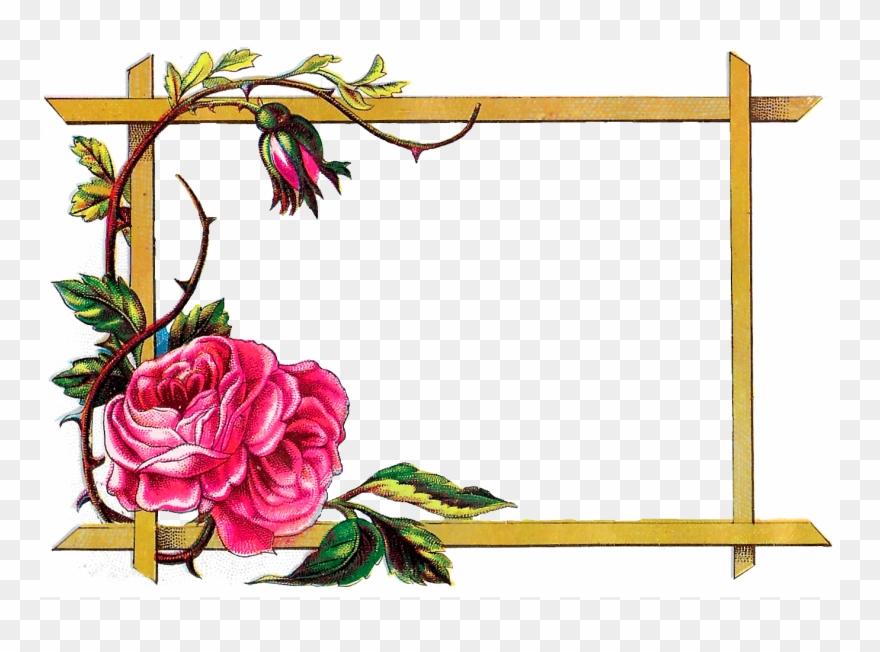 Download Flower Border Design Clipart Floral Design Flowers