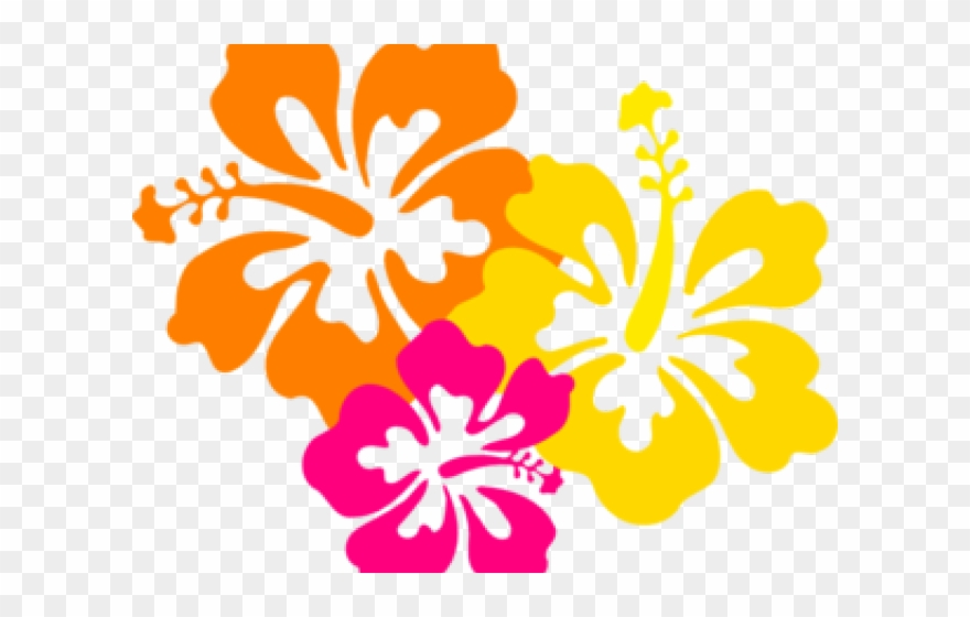 Flowers Borders Clipart Hibiscus Hawaiian Flowers Clipart Png