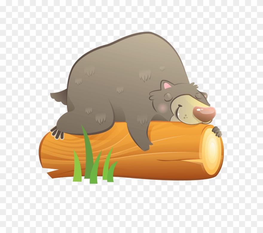 Bear sleeping. Cartoon clipart pinclipart