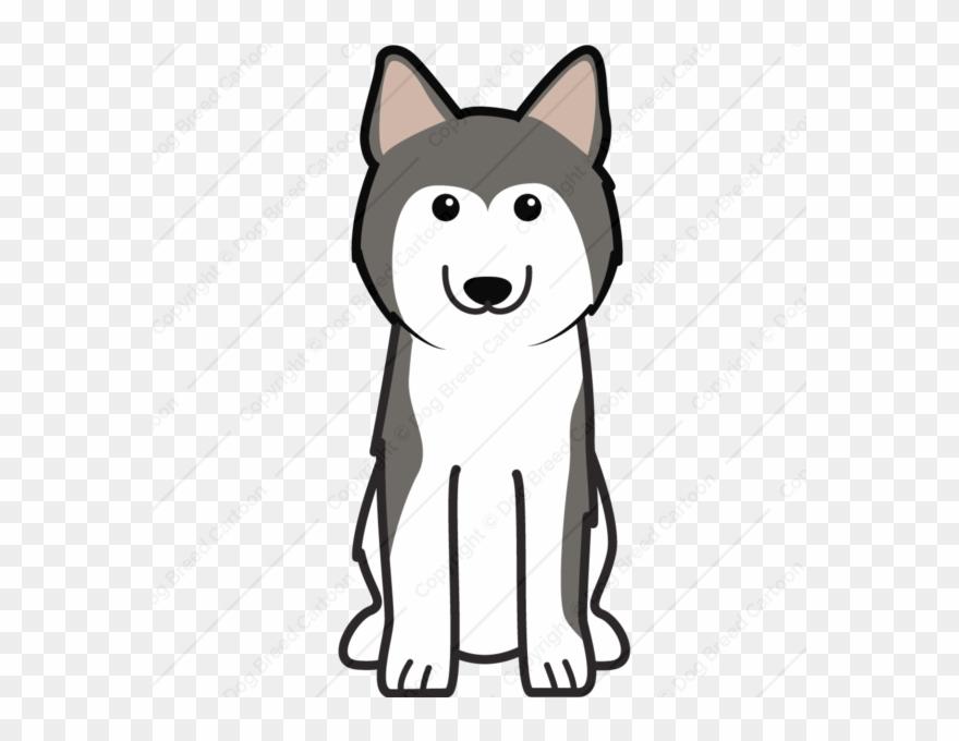 Cartoon Husky Clipart Siberian Husky Alaskan Malamute Dibujar Un Perro Siberiano Png Download 994835 Pinclipart